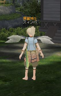 20100305-135647ムステ羽.png
