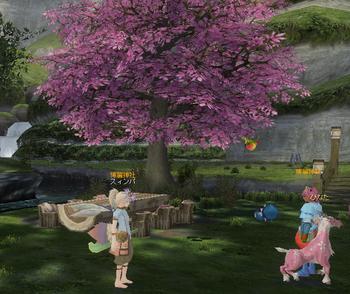 20100401-181548桜とひなた.png